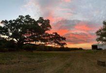 Lone Oak Farm is a new brewery in Olney, MD