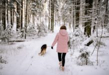 benefits of winter walking