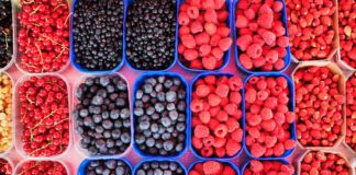 Where to Pick-Your-Own Berries in Montgomery County