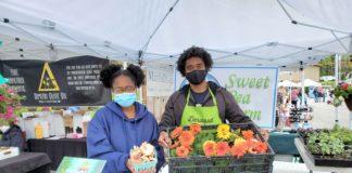 Farm Markets: Where to Shop